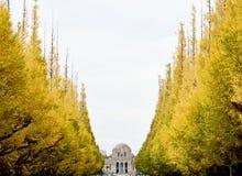 Люди дерева цвета осени идя Токио стоковое фото rf
