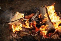 Люди жарят сосиски на открытом огне стоковые фото