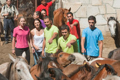 Люди, женщины и лошади Стоковые Фото