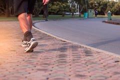 Люди идут в парк Стоковая Фотография RF