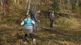 Люди идут около потока горы перемещения семьи Окружающая среда людей горами, реками, потоками Родители и малыши акции видеоматериалы