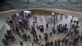 Люди идя в парк в течение дня footage Люди под зонтиком идут в парк Стоковое Фото