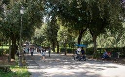 Люди идя в парк стоковые фотографии rf