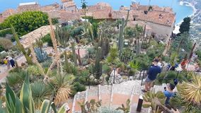 Люди идя в экзотический сад, Eze, к югу от Франции сток-видео