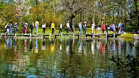 Люди идя над камнями в теле воды в саде keukenhof, Lisse Нидерланд стоковые изображения rf
