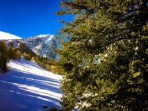 Люди катаясь на лыжах вниз с горы Стоковая Фотография