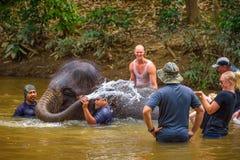 Люди купая с слоном младенца Стоковая Фотография RF