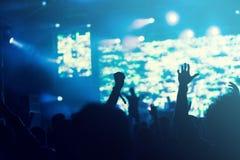 Люди на концерте Стоковые Фото