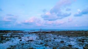 Люди на пляже далеко Стоковое Изображение