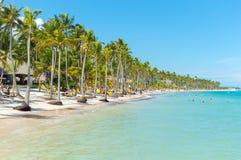 Люди ослабляют на пляже среди пальм в курорте стоковое изображение