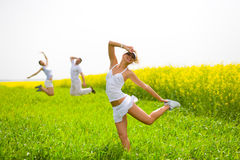 люди поля счастливые скача Стоковые Изображения RF