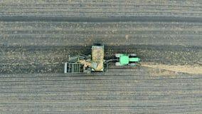 Люди работая на сортируя машине с картошками Урожай, обрабатывая землю, концепция земледелия сток-видео