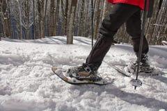 Люди ракеток снежка Стоковая Фотография RF