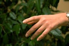 люди руки Стоковые Изображения RF