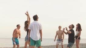 Люди собирают имеют волейбол пляжа потехи и игры на летнем дне акции видеоматериалы
