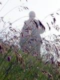 люди тумана Стоковые Изображения