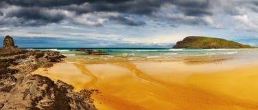 людоед Новая Зеландия залива Стоковое Фото