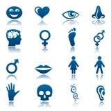 людской комплект иконы Стоковая Фотография RF