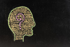 Людской мозг Стоковые Изображения RF