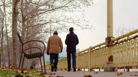 2 люд идя далеко от камеры в Питтсбурге на зимний день сток-видео