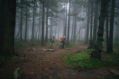 2 люд идя с рюкзаками в туманных древесинах стоковая фотография rf