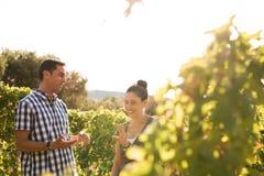 2 люд имея болтовню в виноградниках Стоковая Фотография