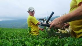 2 люд приниманнсяый за собирая чай в плантации чая Автоматическое собрание чая видеоматериал