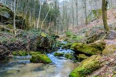 Люксембург, поход следа Mullerthal вдоль реки стоковые фотографии rf