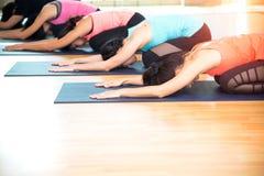 Люди Азии практикуя и работая жизненно важные размышляют йога в классе Стоковое Изображение RF