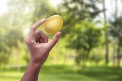 Люди вручают держать золотое пасхальное яйцо Стоковые Фото