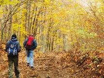 Люди в осеннем лесе Стоковое Изображение