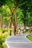 Люди едут велосипед в парке пути велосипеда публично Стоковые Фотографии RF