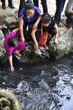 Люди желают удачу от въетнамских рыб бога в потоке бога кулачка Luong в провинции Thanh Hoa Стоковые Фотографии RF