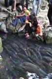 Люди желают удачу от въетнамских рыб бога в потоке бога кулачка Luong в провинции Thanh Hoa Стоковая Фотография