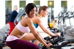Люди закручивая в спортзал на велосипедах Стоковое фото RF