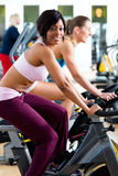Люди закручивая в спортзал на велосипедах Стоковая Фотография RF