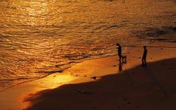 Люди и собака на пляже Стоковые Изображения