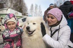 Люди и собаки во время торжества конца имени зимы Стоковые Фотографии RF