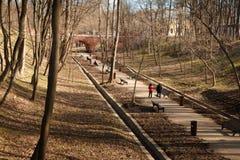 Люди идут весной парк над взглядом Стоковое фото RF