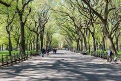 Люди идут в время Central Park весной, Нью-Йорк, США Стоковые Изображения