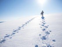 Люди идут в горы Стоковое Изображение RF
