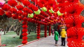 Люди идут под красные фонарики на виске Ditan справедливо во время фестиваля весны в Пекине, China4 акции видеоматериалы