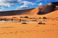 Люди идя между большие дюны в пустыне Namib, в Sossu Стоковое фото RF