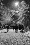 Люди наслаждаются в снеге Стоковое фото RF