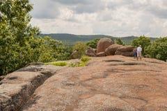 Люди наслаждаясь парком слоновой породы Стоковая Фотография