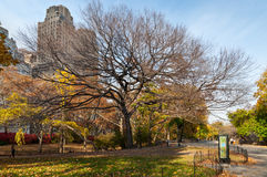 Люди наслаждаясь прогулкой в Central Park Нью-Йорке Стоковые Изображения RF