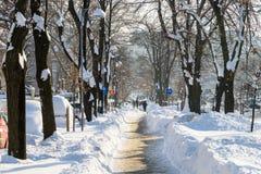 Люди наслаждаясь солнечным зимним днем следовать сильным штормом снега в городском городе Бухареста Стоковые Изображения