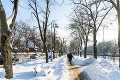 Люди наслаждаясь солнечным зимним днем следовать сильным штормом снега в городском городе Бухареста Стоковая Фотография RF
