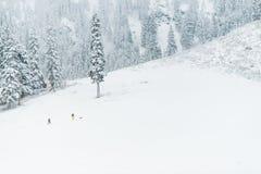 Люди на горе в утре с снегом, Вашингтоном Стоковая Фотография RF
