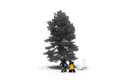 Люди на горе Стоковые Фотографии RF